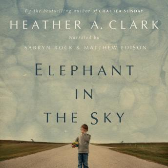 Elephant in the Sky, Heather A. Clark