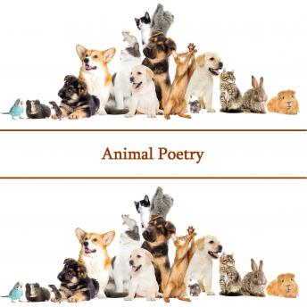 Poetry Of Animals, William Blake, Emily Dickinson, Thomas Hardy