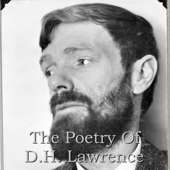 DH Lawrence - The Poetry, DH Lawrence
