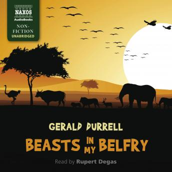Download Beasts in My Belfry by Gerald Durrell