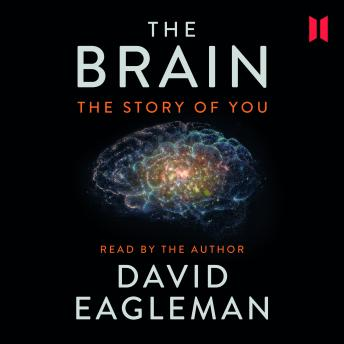 Brain: The Story of You, David Eagleman