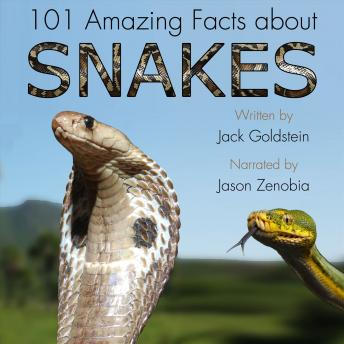 101 Amazing Facts about Snakes, Audio book by Jack Goldstein