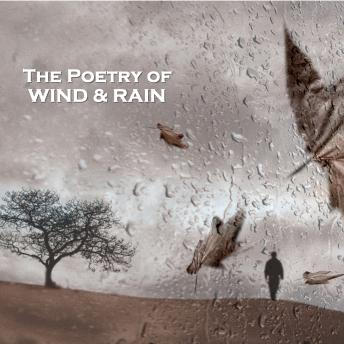 The Poetry of Wind and Rain
