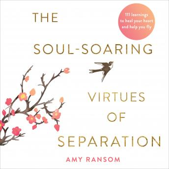 The Soul-Soaring Virtues of Separation: 111 Learnings to Heal Your Heart and Help You Fly