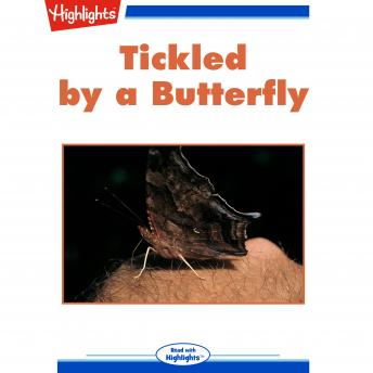 Tickled by a Butterfly