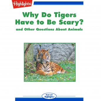Why Do Tigers Have to Be Scary?: and Other Questions About Animals