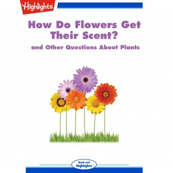 How Do Flowers Get Their Scent?: and Other Questions About Plants