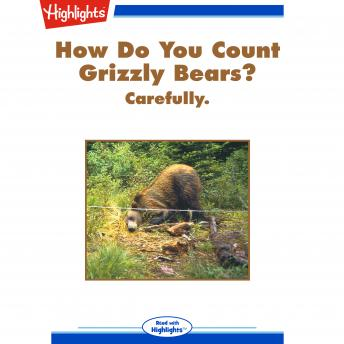 How Do You Count Grizzly Bears?: Carefully.