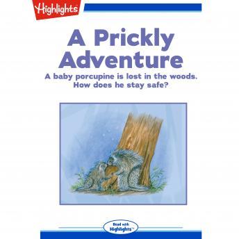 A Prickly Adventure
