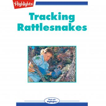 Tracking Rattlesnakes
