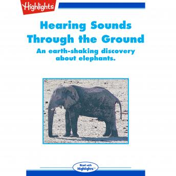 Hearing Sounds Through the Ground: An Earth-Shaking Discovery About Elephants