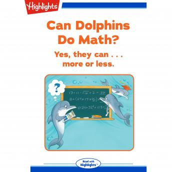 Can Dolphins Do Math?