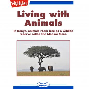 Living with Animals: In Kenya, animals roam free at a wildlife reserve called the Maasai Mara.