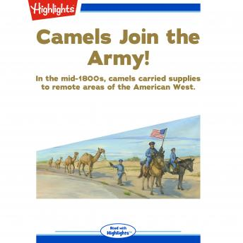 Camels Join the Army!