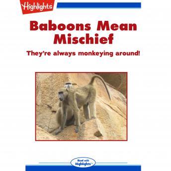 Baboons Mean Mischief