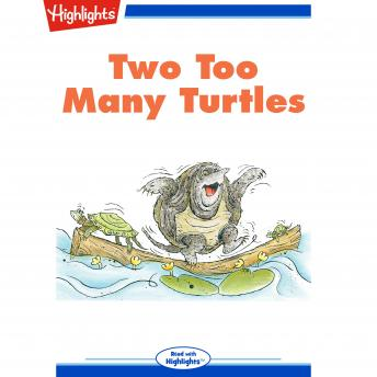 Two Too Many Turtles