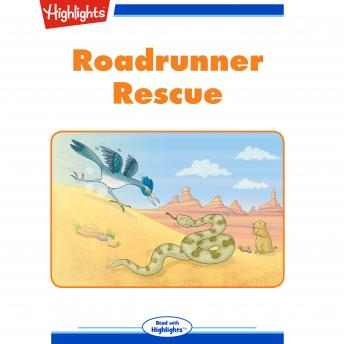 Download Roadrunner Rescue by Brian Berndt