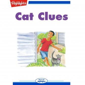 Cat Clues