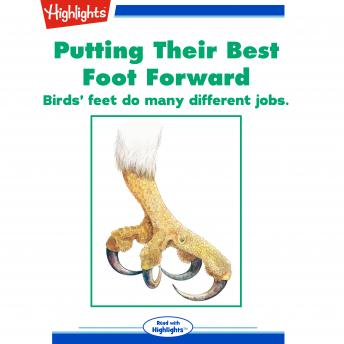 Putting Their Best Foot Forward: Birds' feet do many different jobs.