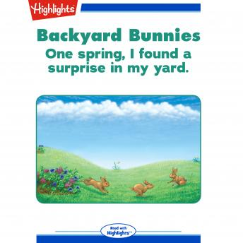 Backyard Bunnies: One spring, I found a surprise in my yard.