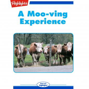 A Moo-ving Experience: Read with Highlights