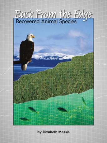 Back from the Edge: Recovered Animal Species