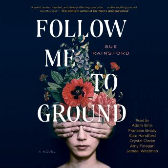 Download Follow Me To Ground: A Novel
