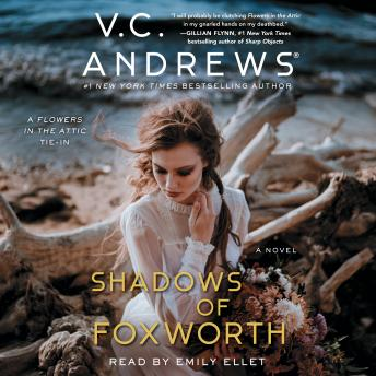 The Shadows of Foxworth