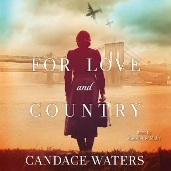 For Love and Country: A Novel