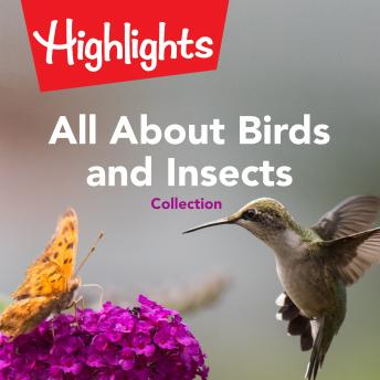 All About Birds and Insects Collection