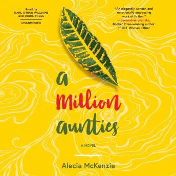 A Million Aunties: A Novel