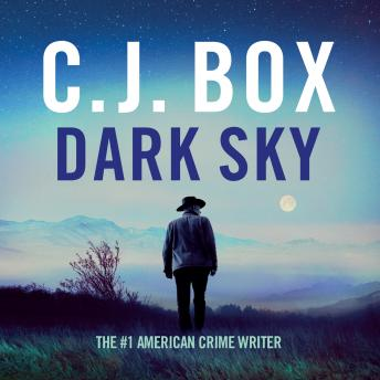 Dark Sky: Joe Pickett Book 21