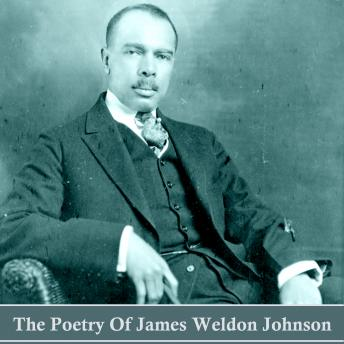 The Poetry of James Weldon Johnson