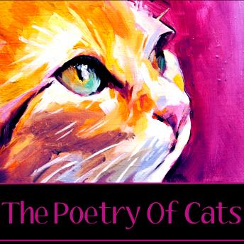 The Poetry of Cats