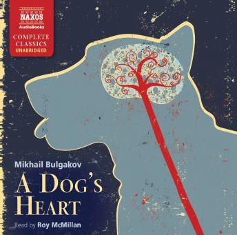 Dog's Heart, Mikhail Bulgakov