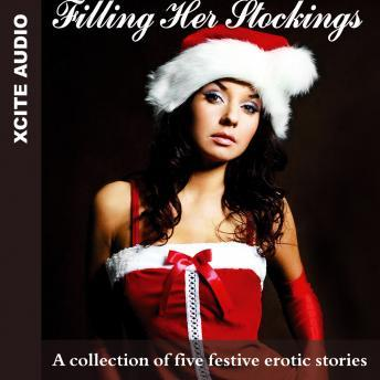 Download Filling Her Stockings - A Collection of Five Festive Erotic Stories by Miranda Forbes
