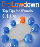 Lowdown: Top Tips for Wannabe CEO's., R Pettinger, Richard Charkin