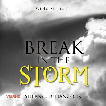 Download Break in the Storm by Sherryl D. Hancock