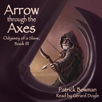 Arrow Through the Axes, Patrick Bowman