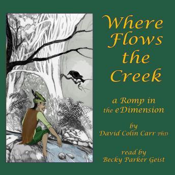 Where Flows the Creek: a Romp in the eDimension