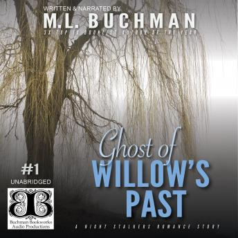 Ghost of Willow's Past, M. L. Buchman