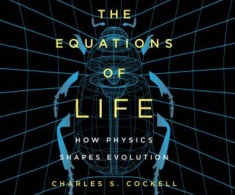 The Equations of Life: How Physics Shapes Evolution