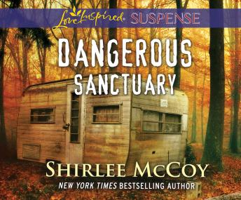 Download Dangerous Sanctuary by Shirlee Mccoy