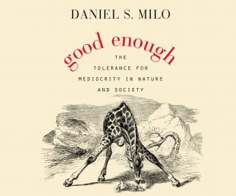 Download Good Enough by Daniel S. Milo