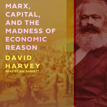 Marx, Capital, and the Madness of Economic Reason, David Harvey