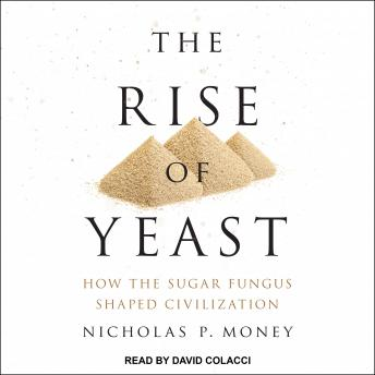 Rise of Yeast: How the Sugar Fungus Shaped Civilization, Nicholas P. Money