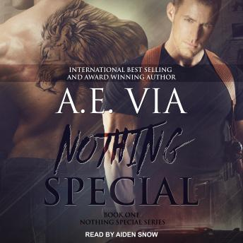 Download Nothing Special by A.E. Via