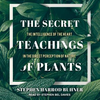 Secret Teachings of Plants: The Intelligence of the Heart in the Direct Perception of Nature, Stephen Harrod Buhner