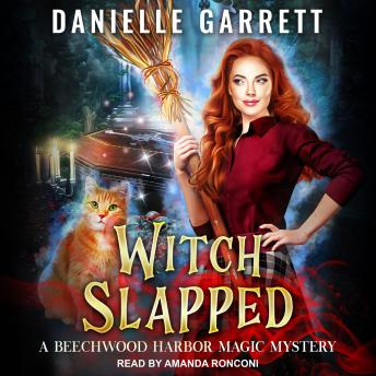 Download Witch Slapped by Danielle Garrett