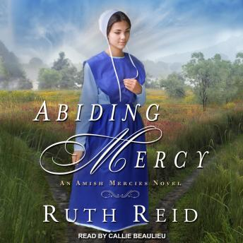 Download Abiding Mercy by Ruth Reid